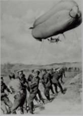 RNAS Blimp1